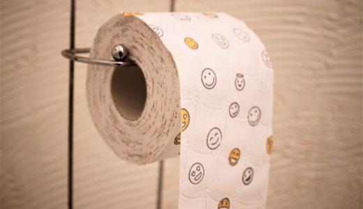 トイレ詰まりを業者を呼ばずに根性で直した話